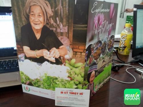 Cách làm brochure quảng cáo đẹp, thu hút khách hàng, 128, Nguyễn Liên, MẠNG XÃ HỘI MUA BÁN, 21/07/2017 14:03:56